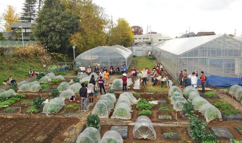 三鷹台高橋体験農園