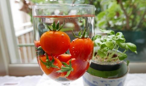 みずみずしいトマト