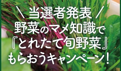 ★☆★当選作品発表☆★☆彡珠玉の野菜のマメ知識10選!『マメプレ』キャンペーン当選作品発表!!