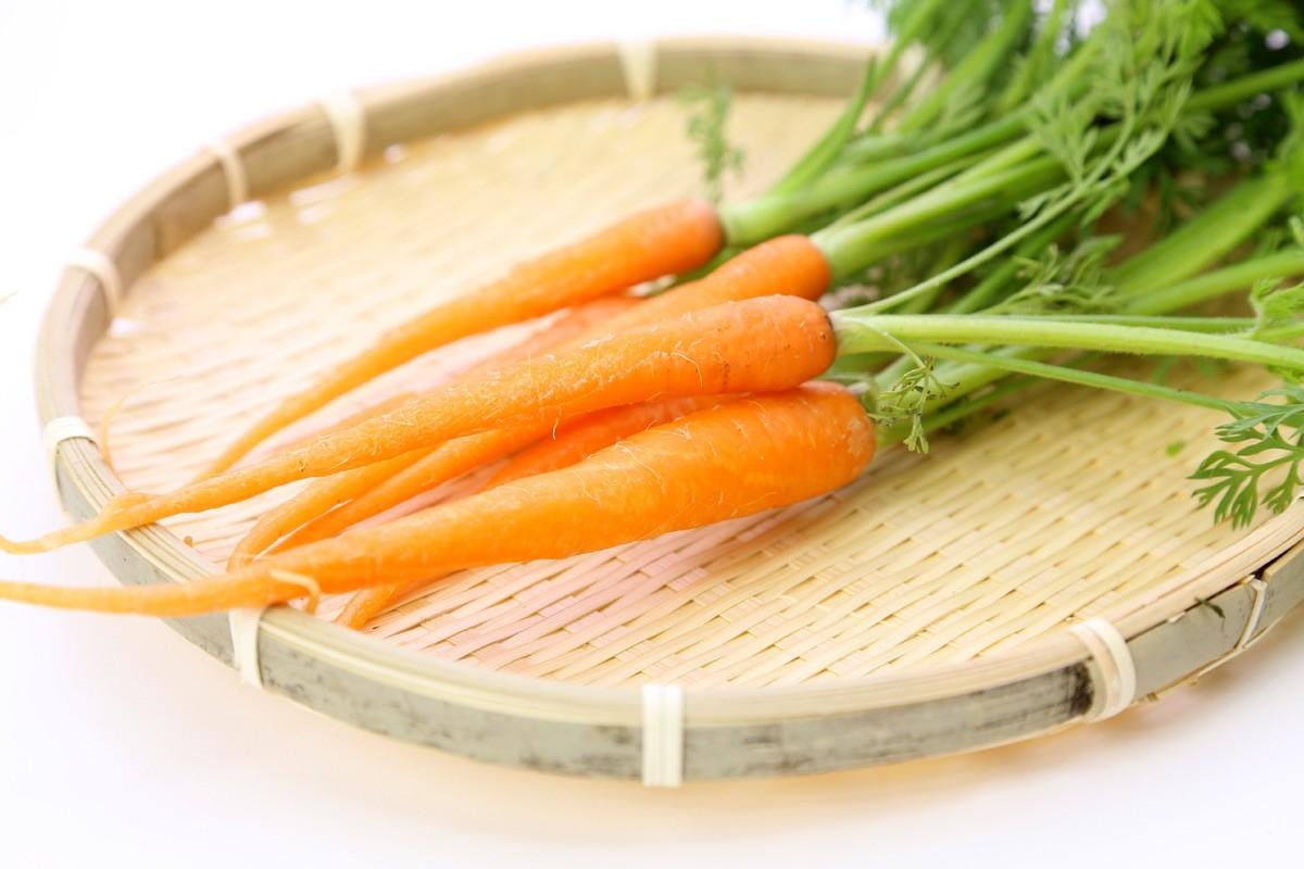 【野菜の育て方コラム】おいしくて健康!カラフル人参の育て方/畑で家庭菜園『春夏野菜編』