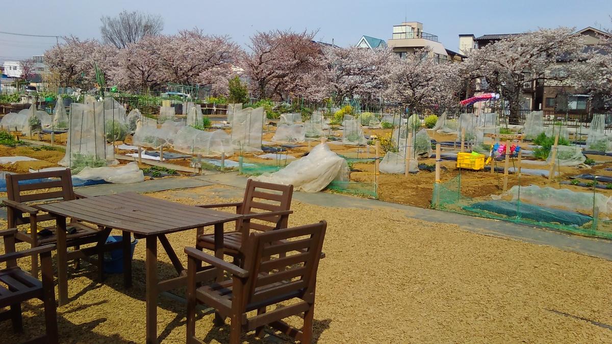 【春の新規オープン第4弾!】横浜市鶴見区・立川市に新農園誕生!