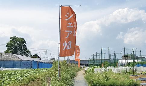 HAPIKU × シェア畑『畑づくりプロジェクト』始動!!