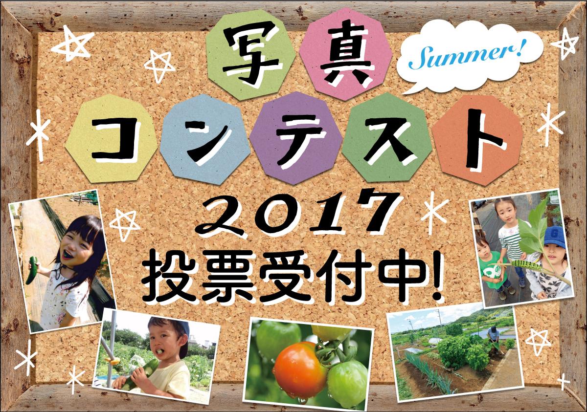 『写真コンテスト2017 Summer』投票開始!