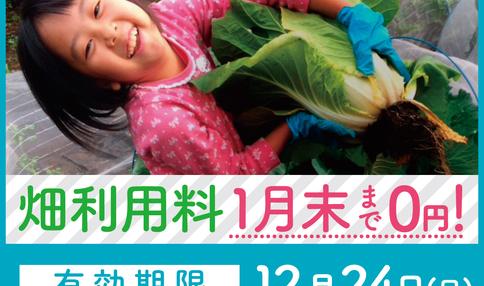 【急げ!今なら、畑利用料が1月末まで0円!】冬のフリーレントキャンペーン!