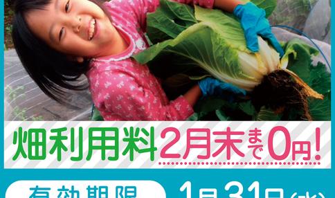 【急げ!今なら、畑利用料が2月末まで0円!】冬のフリーレントキャンペーン!