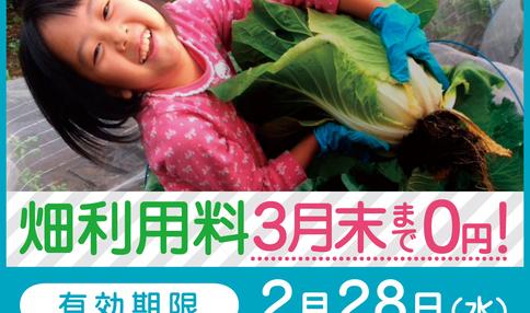 今なら3月末まで利用料無料!春の野菜作り応援キャンペーン
