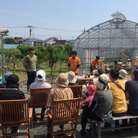 練馬桜台体験農園