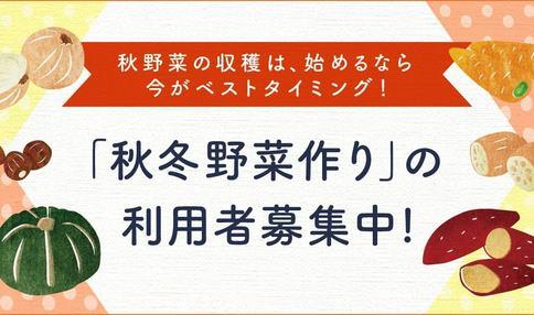 【秋スタート利用者募集!】秋野菜を作るならベストタイミング!利用者募集中!