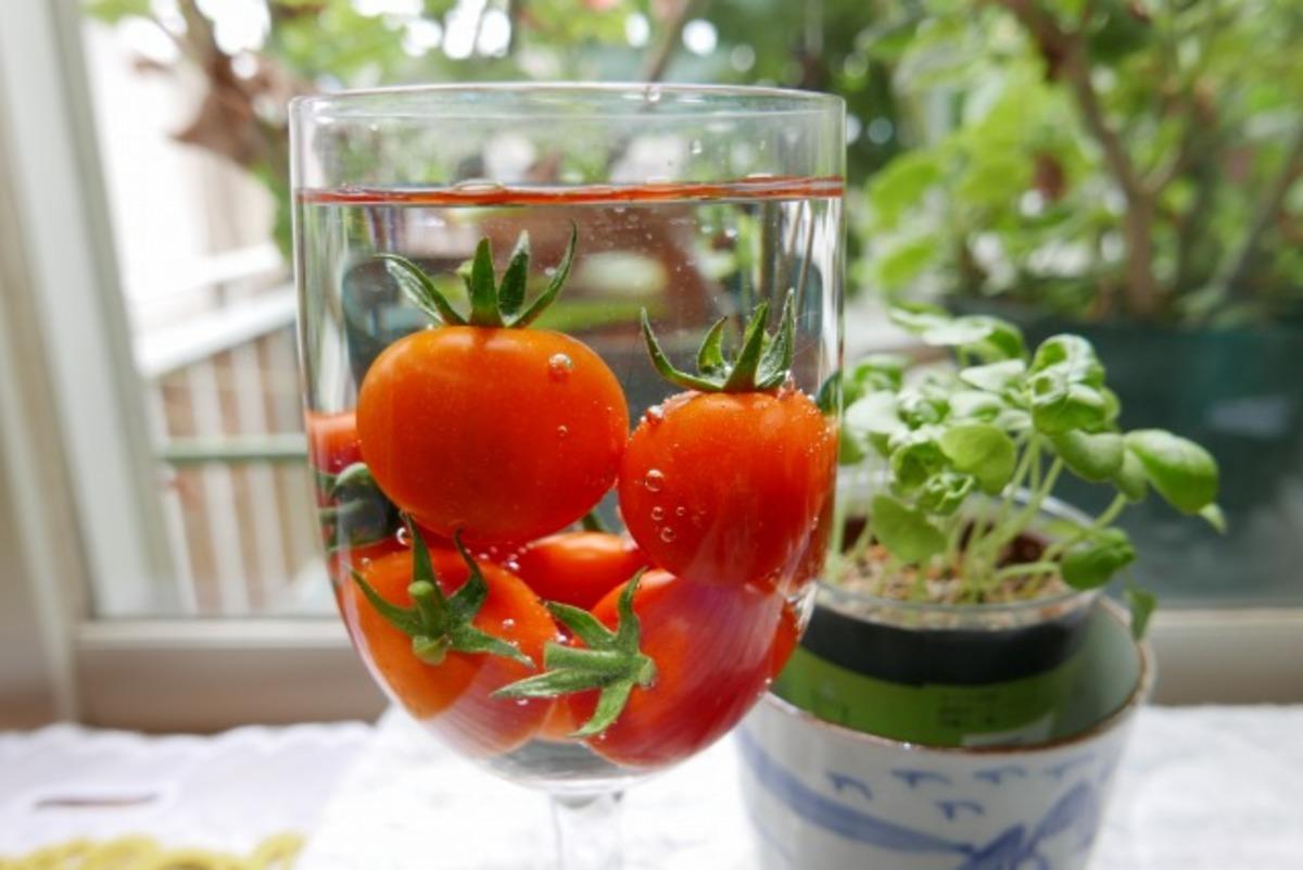 アドバイザー個人作付のミニトマトの画像ですが・・・