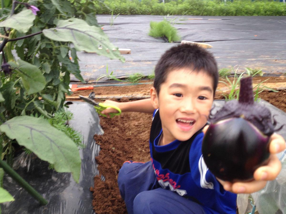 子供が野菜作りに触れる