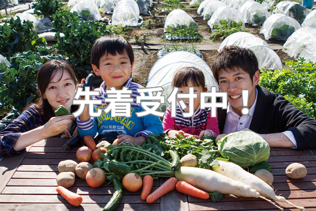 春の新規農園続々オープン!十日市場・流山・大宮西、そしていよいよ大阪(八尾)に進出!