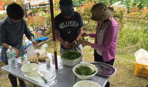イベントの様子、畑で採れたての野菜を使います