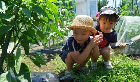 農園は子供たちにとって最高の遊び場!