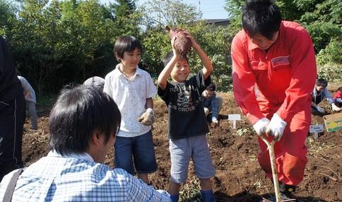 """【締切間近! """"芋フェスタ""""】芋掘りや温泉など盛りだくさんのイベント開催!"""